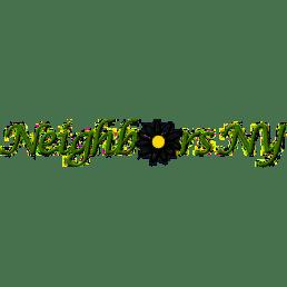 Neighbors NY logo