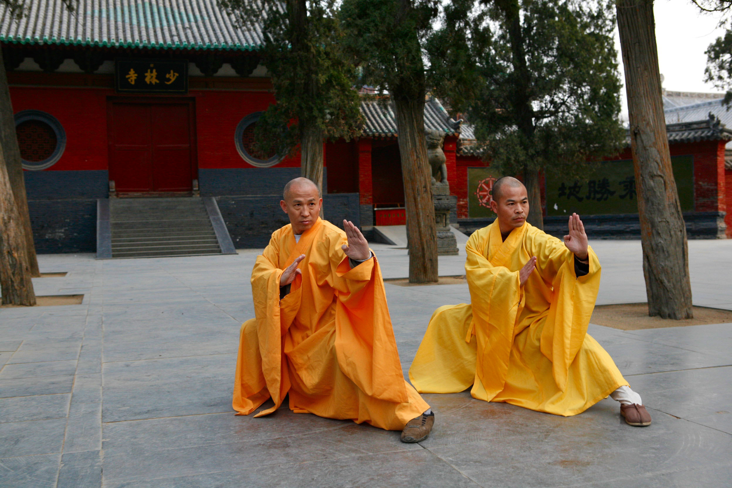 Monks doing tai chi
