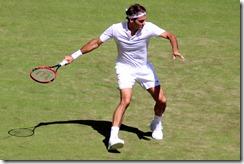 Federer 6-29-2015 10-44-42 PM 2785x1859