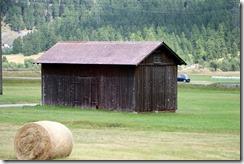 baled hay cylinders 8-1-2015 5-54-08 AM 5472x3648