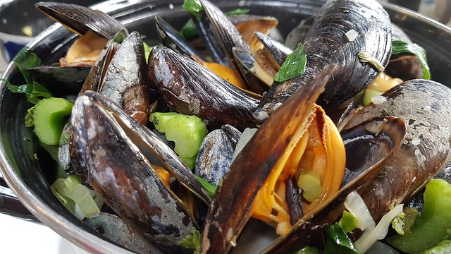 mussels-4375642_640