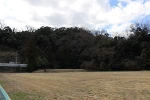 伊豆韮山の守山