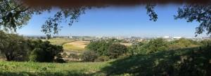 丸墓山古墳から忍城方面の展望