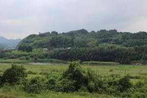 戸次川の戦い