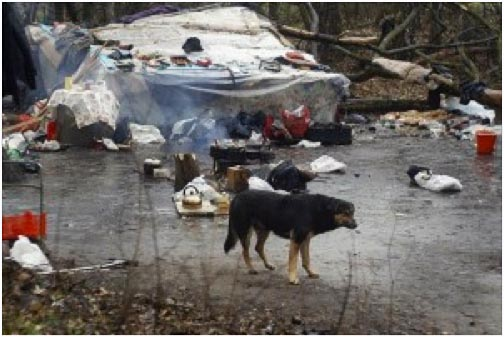 Illegal camp in Moscow
