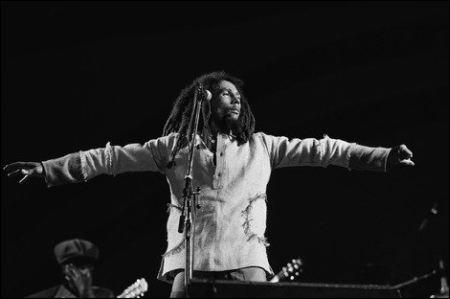 Bob in 'Marley' ©ascot-elite