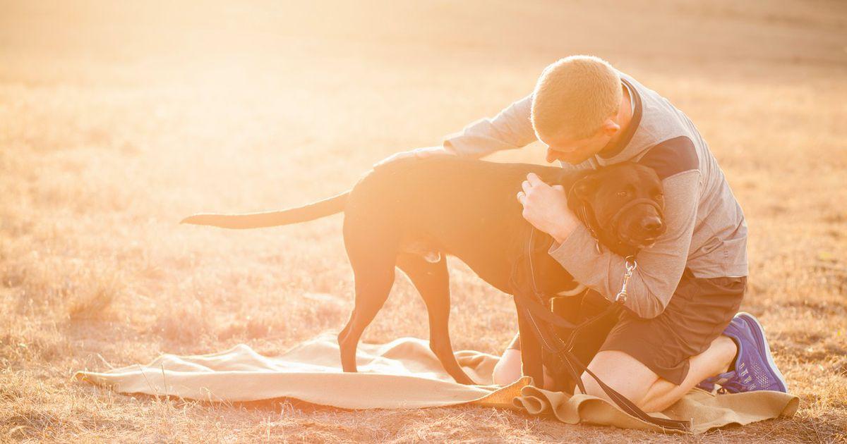 Psiček rešil življenje posvojitelju.