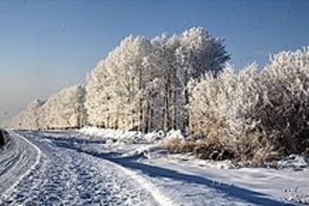 МЧС России: в Оренбургской областиожидается ледяной дождь