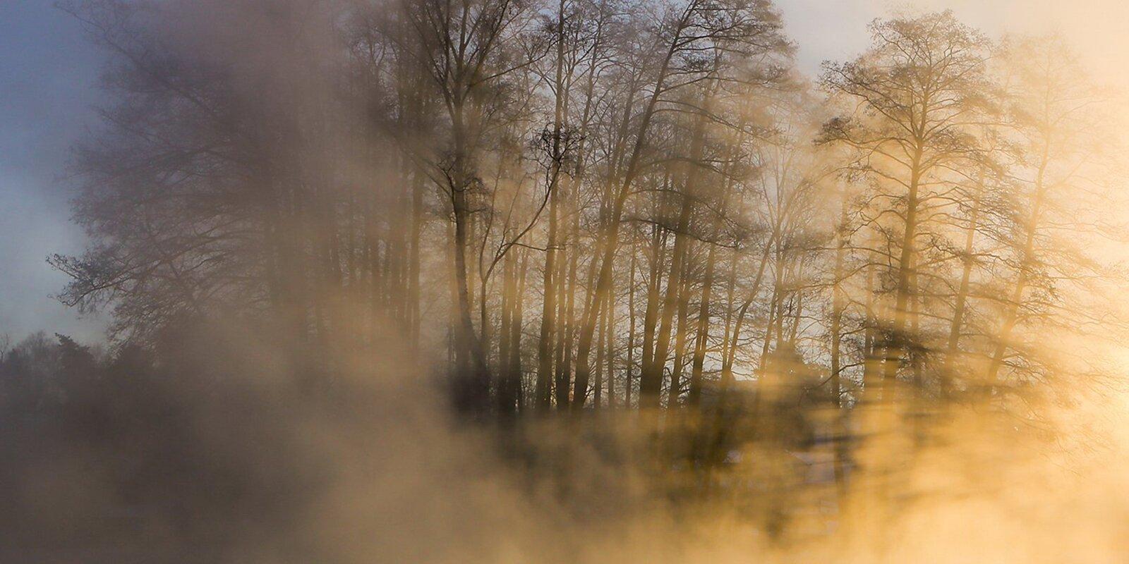 В Москве до вечера сохранится туман