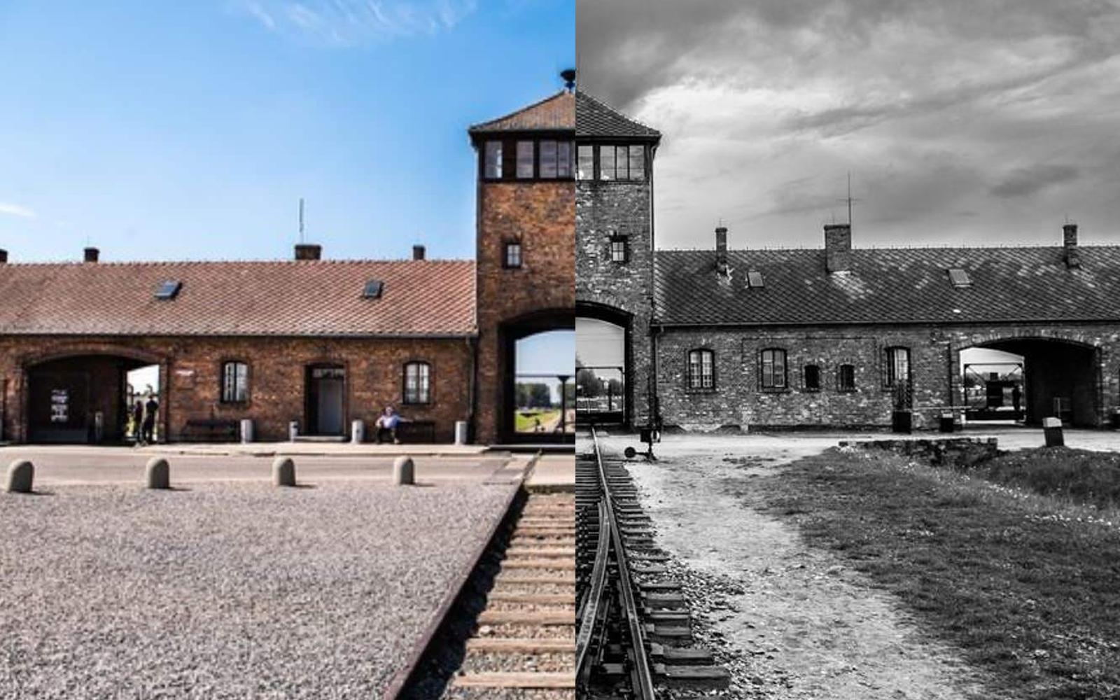 Эдит Эгер, пережившая Освенцим и ее «Выбор» надежды на жизнь