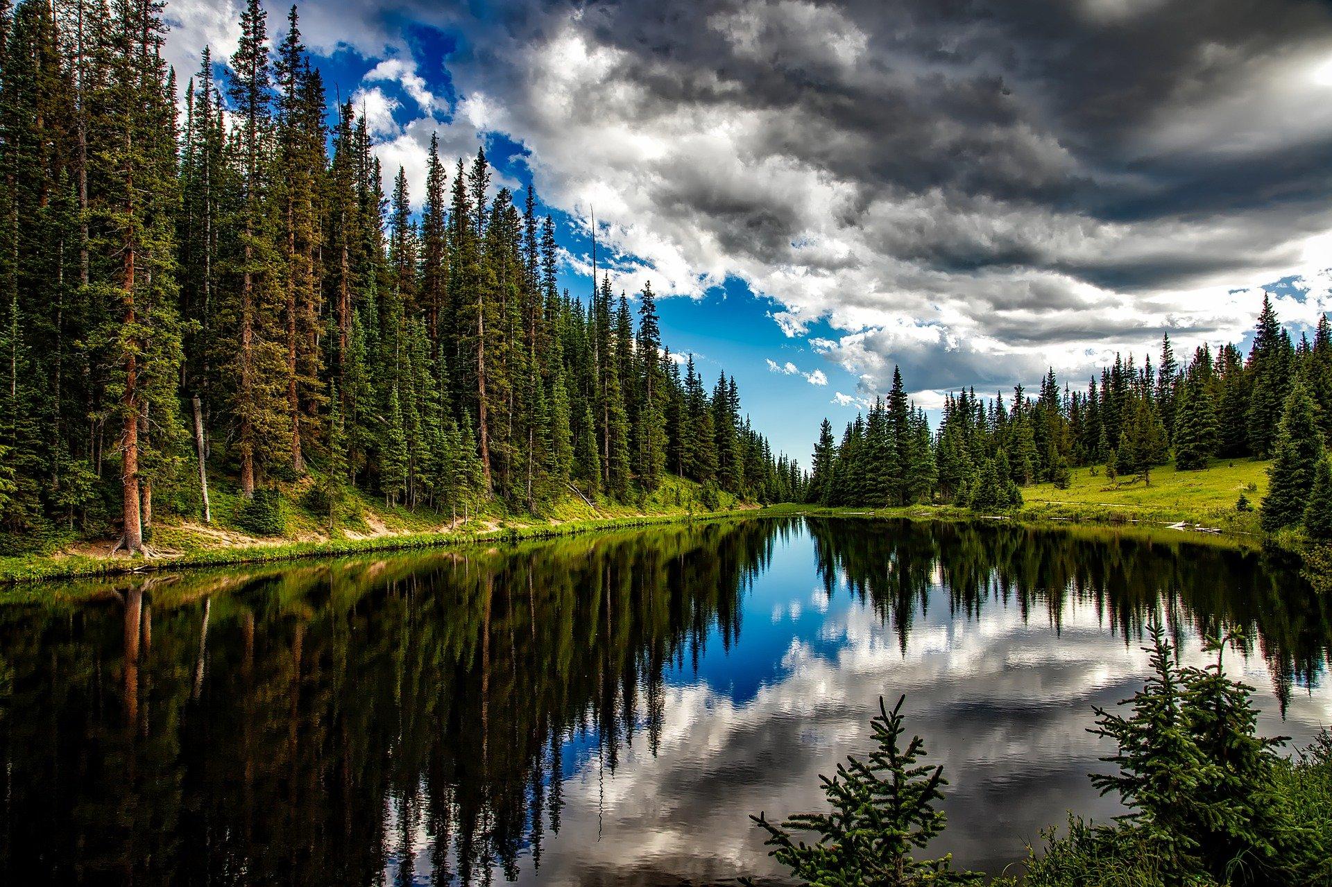 На территории Нижегородского парка «Воскресенское Поветлужье» появится экотропа