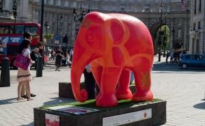 不要想紅色大象
