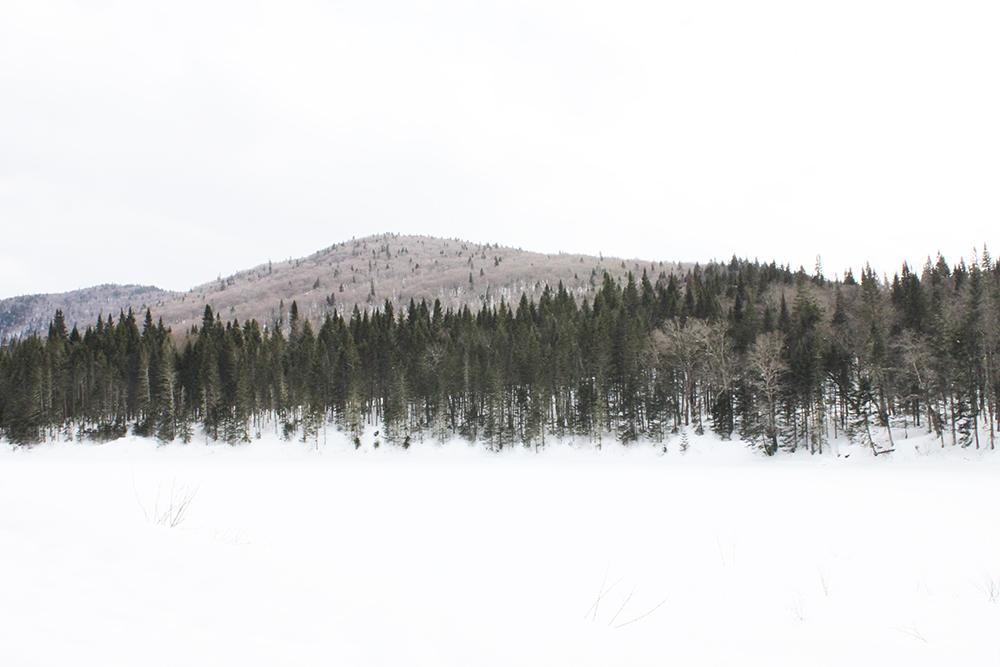 Parc de la Jacques Cartier Québec