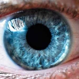 iridologie-7