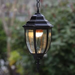 Outdoor Pendant Light Image