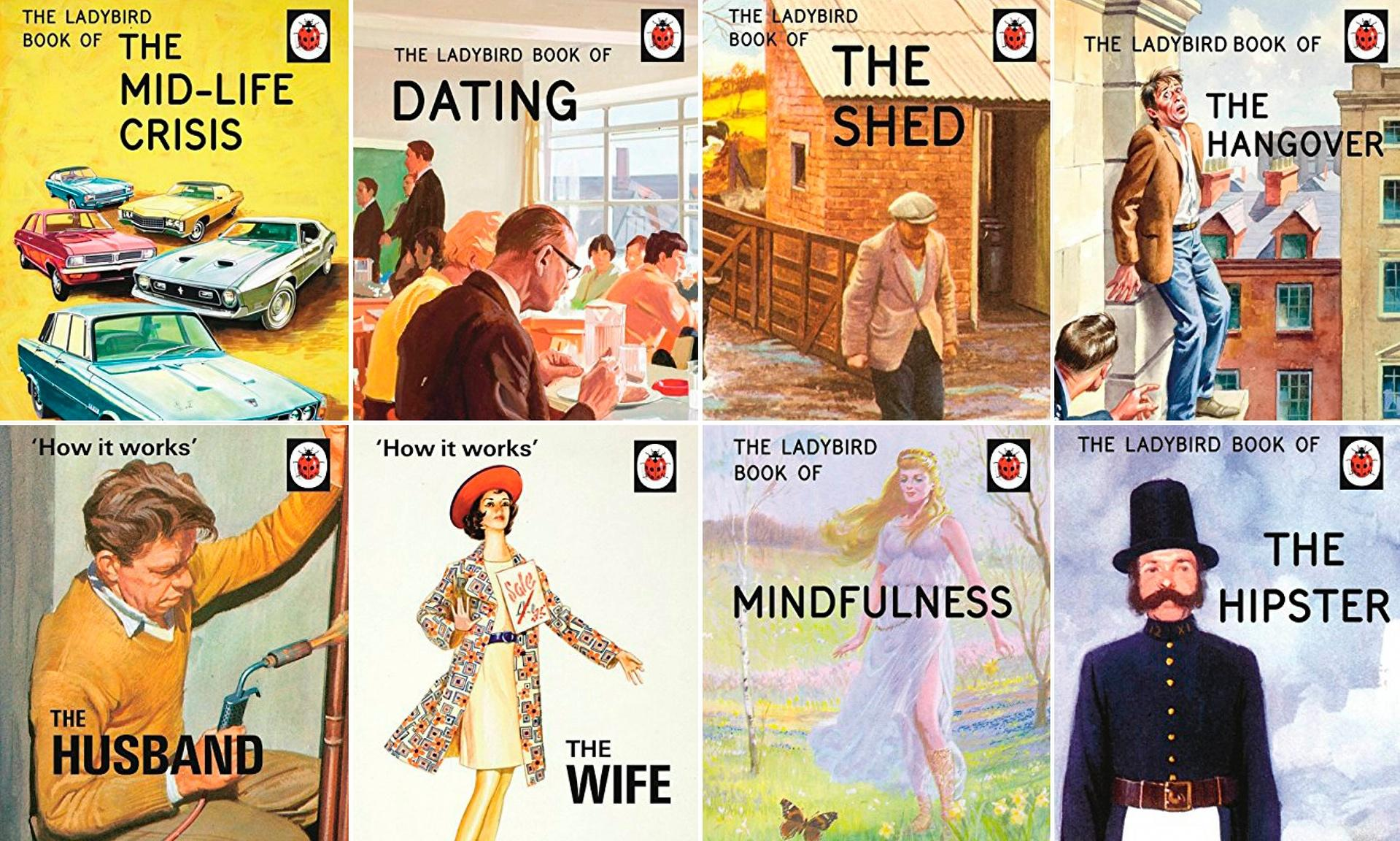 ladybird-book-for-grown-ups