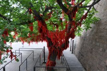 Tree covered in offerings