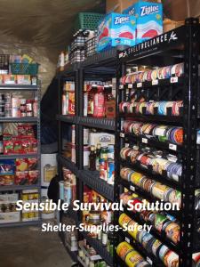Common sense survival plans