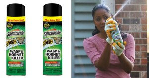 Wasp spray for safety