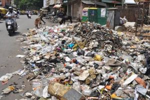 Sanitation and garbage