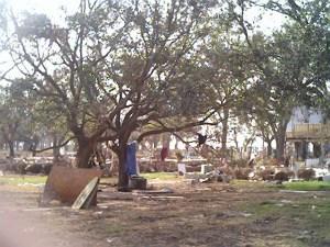 Hurricanes. Storm surge from Hurricane Katrina