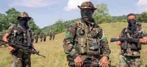 Paramilitary marauders