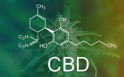 Qu'est ce que le Cannabidiol ou CBD ?