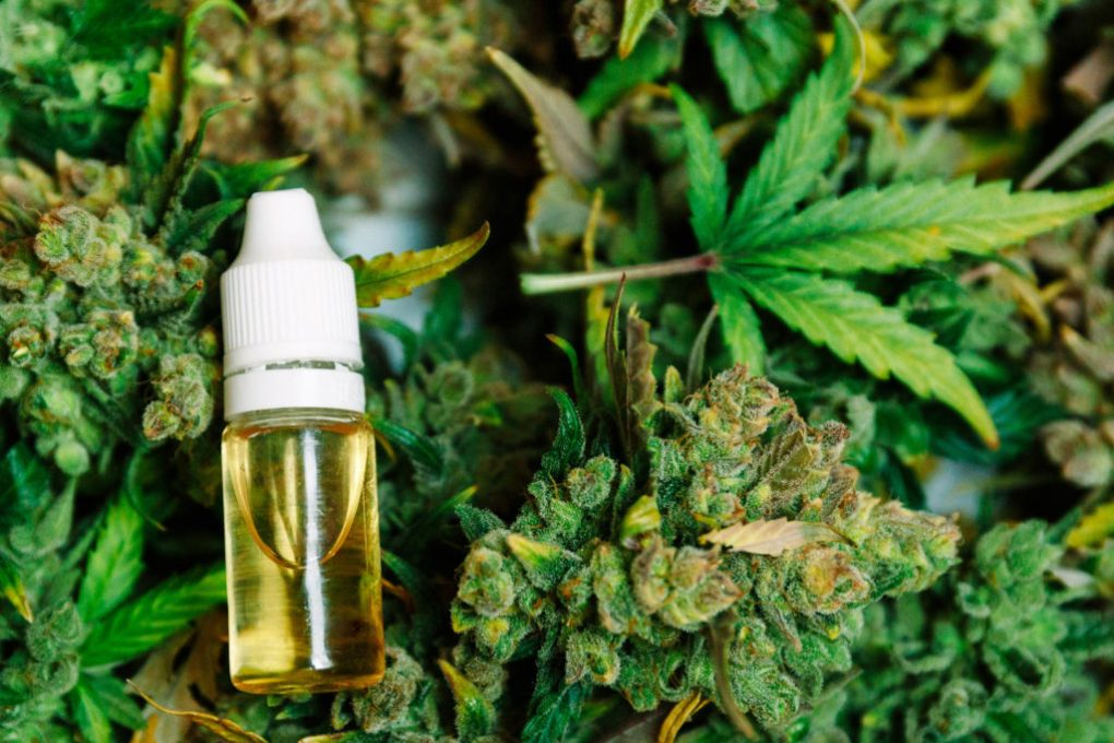 Cannabis oil (Full Spectrum) and CBD oil: what's the difference?