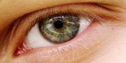 Glaucoma is a common disease affecting the eyes, that increases in frequency with age (© 0olong)