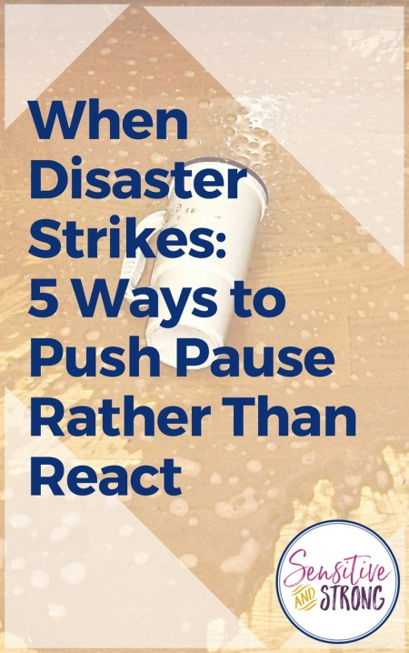 When Disaster Strikes 5 Ways to Push Pause Rather Than React