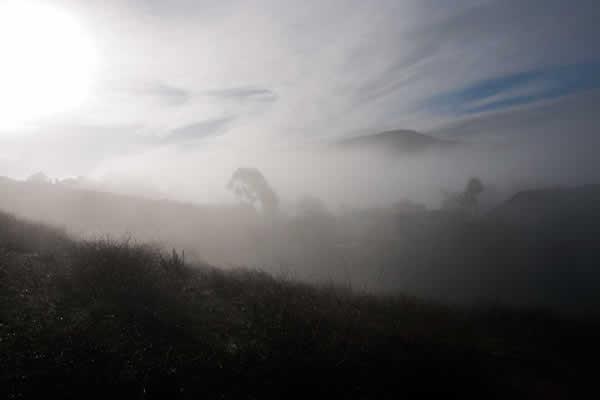 Santee dawn