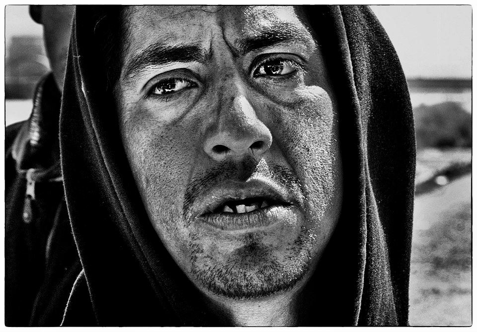 Dolor photograph by Chris Bava