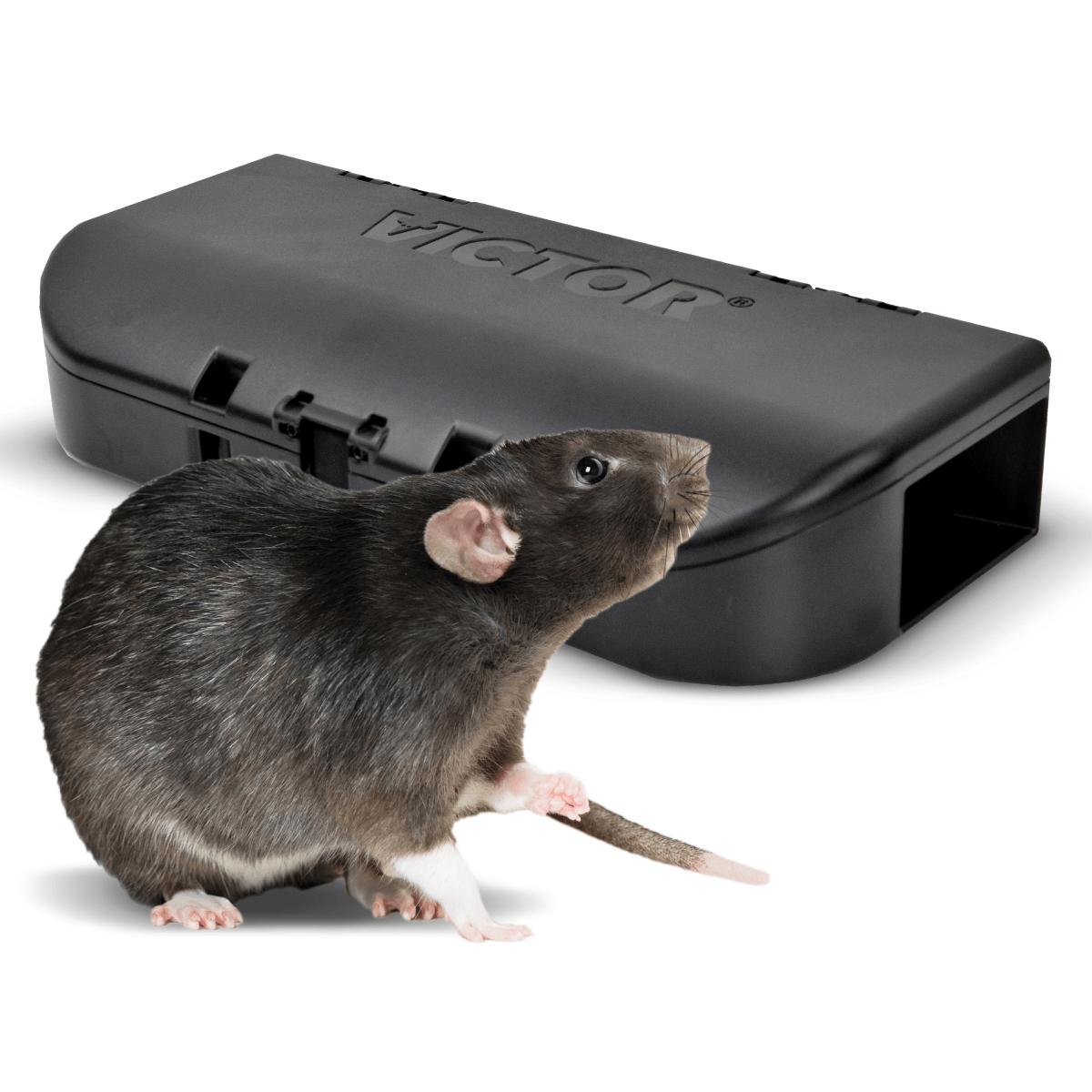 SensorWorks-Ready Woodstream Smart-Kill Rat Trap