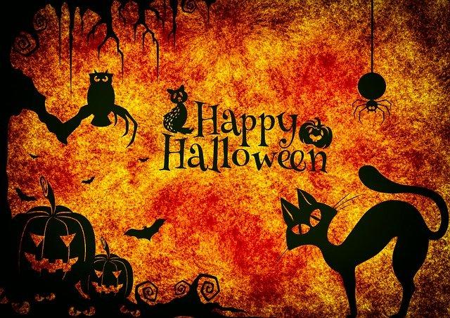 halloween-g62a78e8d0_640