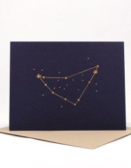 Constellation card, Capricorn