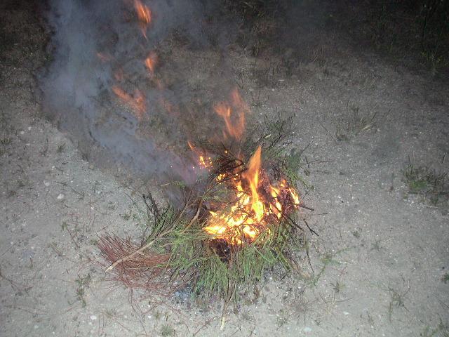 fogueira de rosmaninho