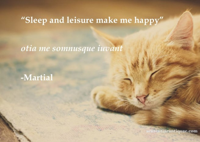 Sleep and Leisure