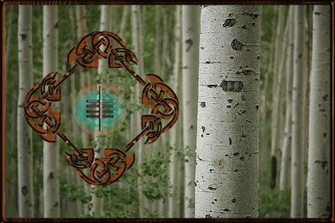 Aspen Tree Spiritual Meaning