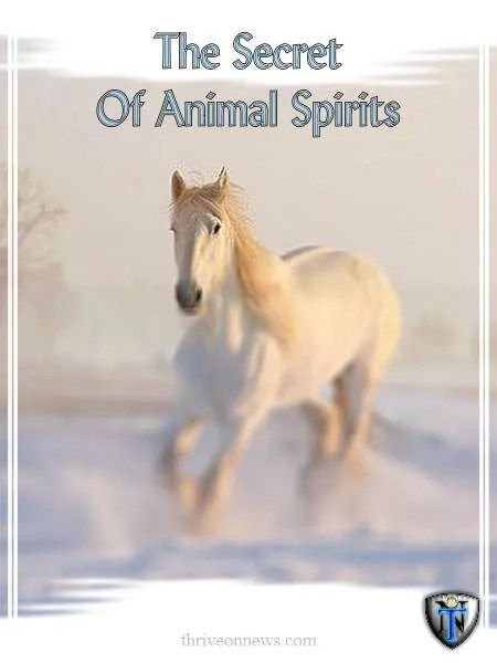 what is an animal spirit guide