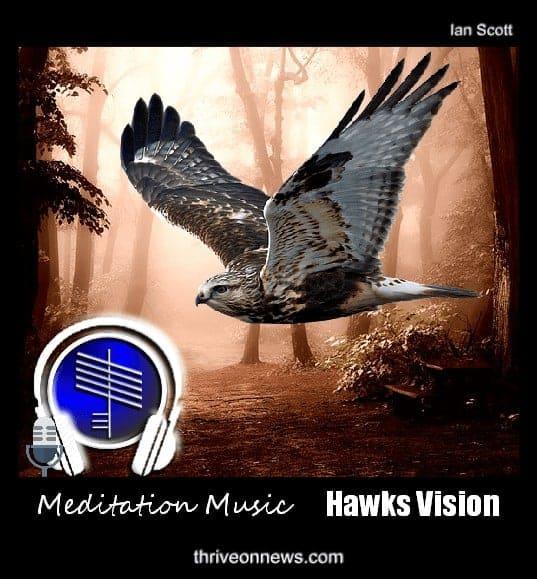 Guided Meditation Music Hawk