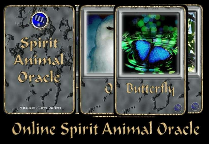 animal oracle