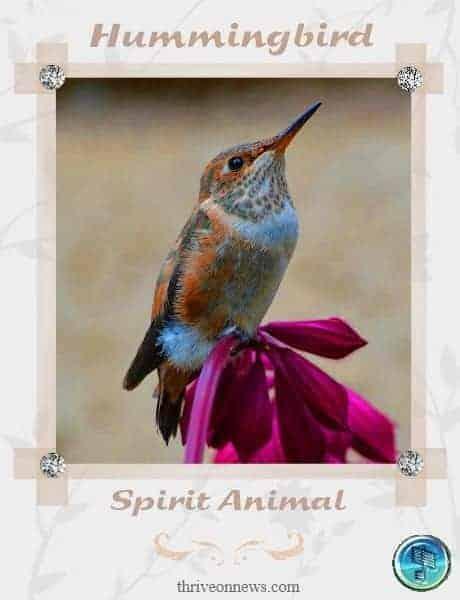 hummingbird meaning spiritual