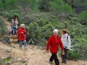 Sentier Francis Lastenouse -Travaux du 30 octobre 2012