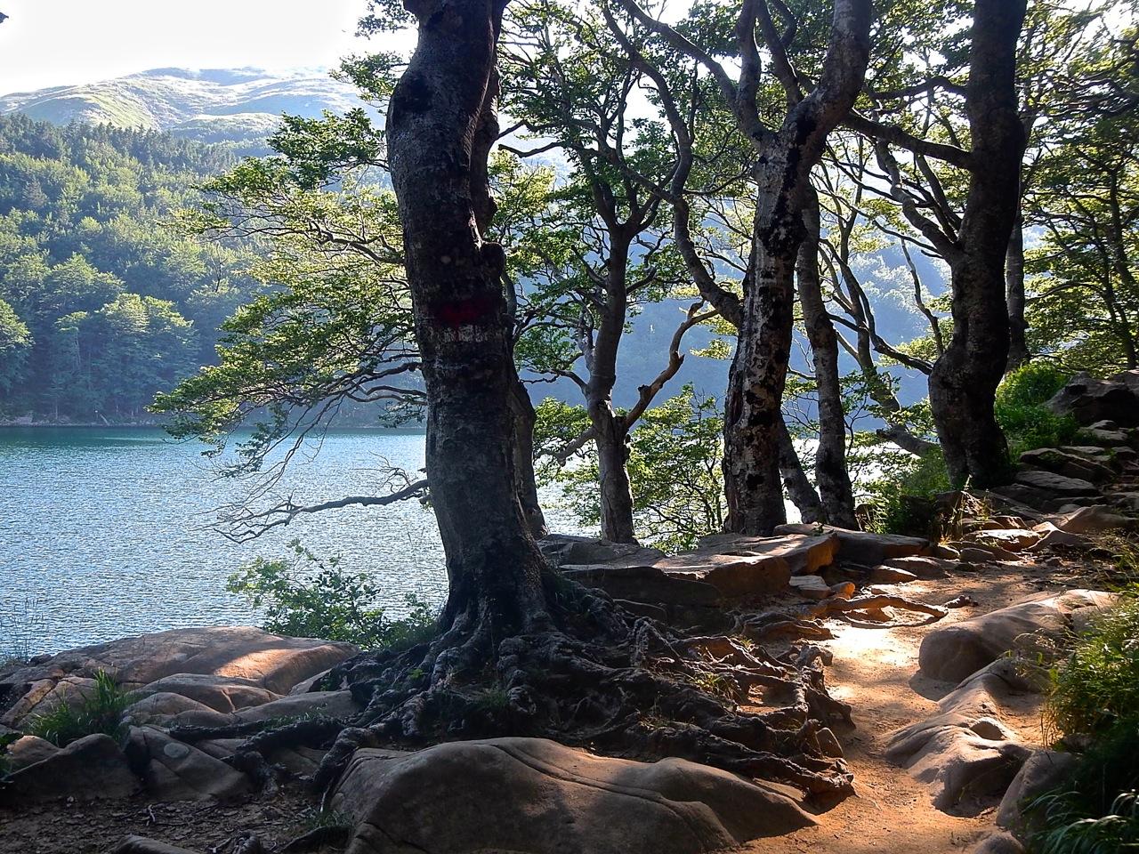Al Lago Santo parmense, tra i boschi della strega Lucabagia