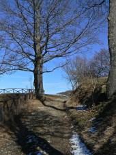 l'inizio del sentiero, nell'alta campagna modenese
