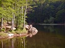 Il lago del Rifugio