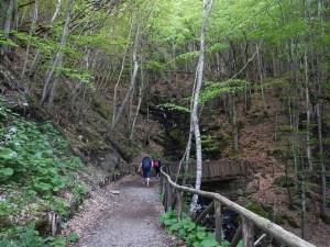 Il sentiero accessibile