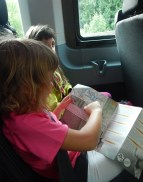 nel Wild Bus