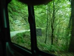 Dai finestrini del Wild Bus