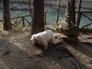 Uno gnomo in pietra accoglie i visitatori (anche a 4 zampe)